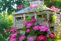 Beautiful Birdhouses / by Cathy Holz