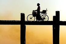 bikes bikes bikes / by Tina Bucci