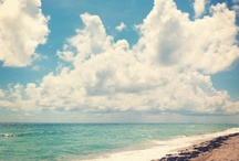 Florida Fun / Welcome to the sunshine state! / by Jerriann Sullivan