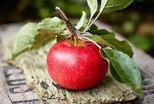 an apple a day / by Tina Bucci