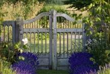 garden gates & fences & pathways / by Tina Bucci
