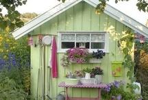 garden love / by Tina Bucci