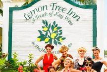 Lemon Tree Inn / Lemon Tree Inn is a boutique hotel in Naples. Florida. It is walking distance to great restaurants, shops, galleries and activities! www.LemonTreeInn.com