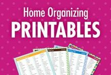 "Home Organizing Printables / Do you love the satisfying swipe of a checkmark on a To Do List? Or are checklists one of the only ways you seem to be able to get organized or be productive? Then be sure to ""check"" off the follow button, because Alejandra brings her best home organizing printables to this board! Home organizational checklists and printables can be downloaded at alejandra.tv! / by Alejandra Costello 