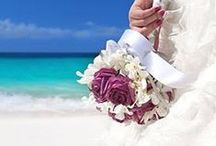 Beach Weddings / Getting married should be perfect, that's why a wedding at the beach is the best kind of wedding there is!