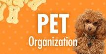 Pet Organization / Alejandra Costello's dog tail-wagging pet supply storage tips will help you organize pet essentials and accessories! Her pet organization tips, videos, best products, and ideas for pets, will help you enjoy more time with your fur babies – and be more at peace when you're away from them.