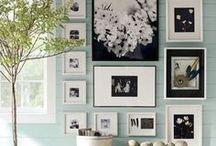 ↻ Paint & Pictures! ↻
