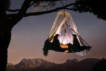 Camping / by Brittni Johnson
