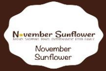 November Sunflower / My blog. It's where I share how to save money, shop smarter not harder and earn things for free in a NON-EXTREME, laid back, no DUMPSTER DIVING kind of way.