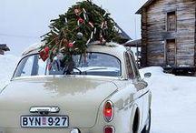 Christmas Holidays / by Jennifer Klenske