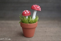 Home studies - Toadstools