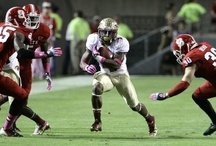 FSU vs. NC State - October 6th / by Florida State Seminoles