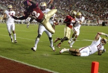 FSU vs. Boston College  - October 13th / by Florida State Seminoles