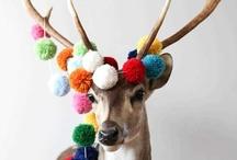 Christmas  / DIY Christmas + Goodies / by Lady Mustard