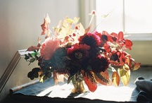 fabulous florals / by Christine Lucaciu