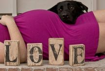 Maternity and Announcement Pictures / by Carrie Nolen