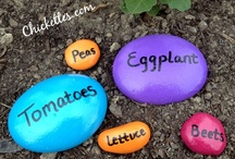 gardening ideas / by Michele Browning