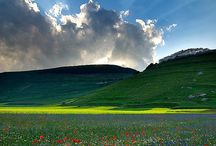 Landscape / Landscape a Beautiful vision of world