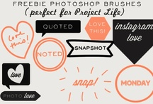 Photoshop Freebies / by Desiree Tolle Forwoodson
