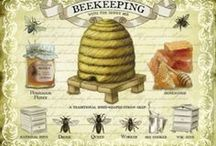 Bee Keeping Lessons