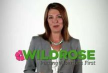 Wildrose TV Ads / 2012 election campaign / by Team Wildrose