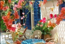 outdoor spaces / by Anne Georgakilas