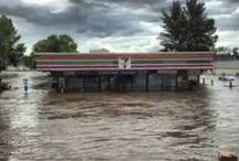 2013 Alberta Flood / by Team Wildrose