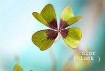 Color Palette's / Beautiful color combinations that inspire me!
