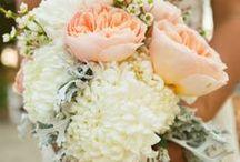 Bouquets / by Jeannie Marie Skjonsberg