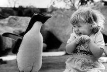 ooh cute! / by Bethy Amidan