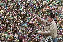 Easter+Eggs= Eggellent! / by Bethy Amidan
