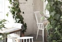 Home—Indoors / Interior dreaming