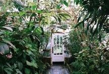 Home—Outdoors / Outdoor inspiration