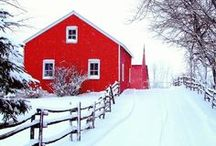 Holiday / All things Christmas including holiday decorating, entertaining, gifting and more.