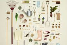 Gardening(future allotment)