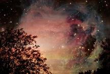La Bella Noche / by Gail Hall