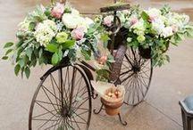 sweet bike &... / doce bicicleta &... / by MariaFatima El-Khatib Borges Gomide