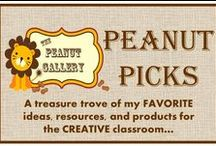 Fun Classroom Ideas / So much to do & so little time... / by Peanut Gallery