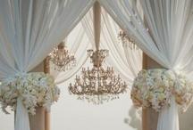 Black/Saari Wedding Ideas
