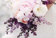 Purple Wedding Inspiration / Digibuddha  |  Invitation + Paper Co.  |  digibuddha.com