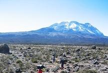 Mt Kilimanjaro Climb / by Becca Riding