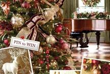 Christmas and Winter wonderland / by Brenda Carpenter