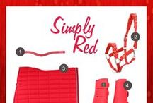 Simply Red / The color of love… | Shop at: http://www.ej.nl/english/  / by Epplejeck