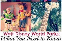 Disney Vacations / The happiest place on earth / by Tawni Neeser