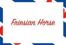 Friesian Horse / http://www.ej.nl/english/theme-shops/frisian-horse-shop/ / by Epplejeck