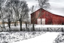 Barns / by Janet Wolfson