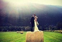 Wedding and Honeymoon / by Cristina Quattlebaum