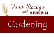 Gardening / by Food Storage and Survival