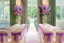 Wedding Ceremony / Inspiration for wedding ceremonies, aisle decorations, ring bearers and flower girls.