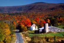 Best Fall Drives/Rides / by Cheryl Kelly